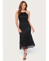 Bebe Lace Halter Midi Dress - Black