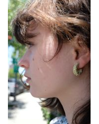 504f53b5183fe Cuba Earrings Vanilla Silver Studs - Metallic