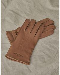 Belstaff Markham Glove - Brown