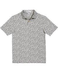 Peter Millar Boy's Bird Airplanes Print Polo Shirt - Gray