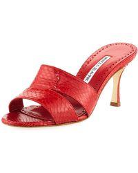 Manolo Blahnik - Iacopo Snakeskin Slide Sandals - Lyst