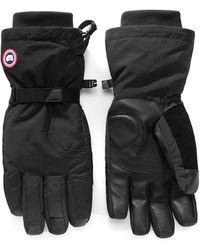 Canada Goose Men's Down-filled Gloves - Black