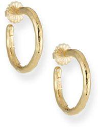 Ippolita - Glamazon Yellow Gold Hoop Earrings - Lyst