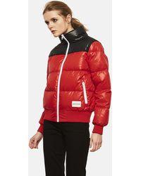 Calvin Klein Cropped Down Jacket - Red