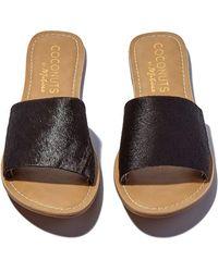 Matisse - Black Cabana Sandals - Lyst