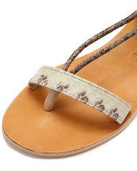 Cocobelle Rio Wrap Around Tie Sandals - Multicolour