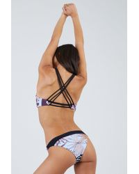 Maaji Hidden Valley Moderate Bikini Bottom - Floral Stripe Print - Multicolour