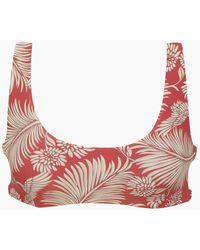 Amuse Society Daniela Bralette Bikini Top - Red