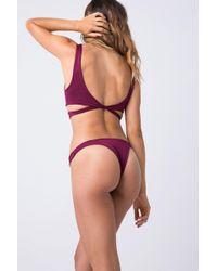 Indah Tenille Banded Brazilian Bikini Bottom - Bordeaux Wine Red