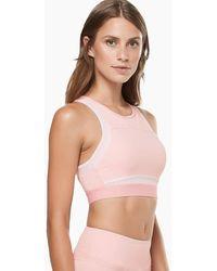 Lilybod Petta Sports Bra - Coral Blush - Pink