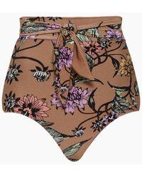 Triya Sun Hot Knot Front High Waist Bikini Bottom - Multicolor