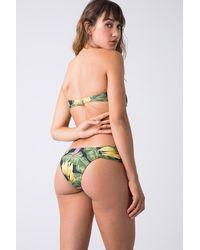 Triya Bebel Twisted Bandeau Bikini Top - Green