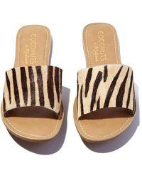 Matisse Cabana Sandals - Multicolour