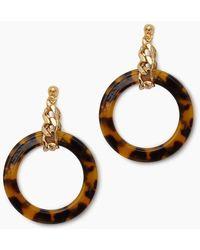 Vanessa Mooney Gia Chain & Tortoise Shell Hoops - Tortoise - Multicolour