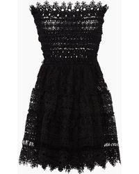 Waimari Vallarta Guipure Lace Strapless Mini Dress - Black