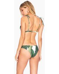 Beach Riot Sandy Seamless Cheeky Bikini Bottom - Tropical Palm Print - Green
