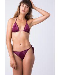 Indah Lewis Lace Tie Side Bikini Bottom - Bordeaux Wine Red