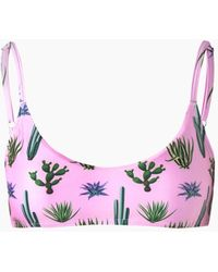 Verde Limon Sol Bralette Bikini Top - Pink