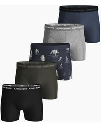 Björn Borg Winter Print Essential Shorts 5-pack Mood Indigo - Meerkleurig