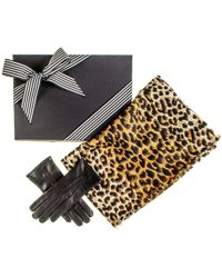 Black.co.uk - Leopard Print Scarf And Cashmere Lined Leather Gloves Gift Set - Lyst