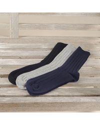 Black Men's Cashmere Socks Set - Multicolour