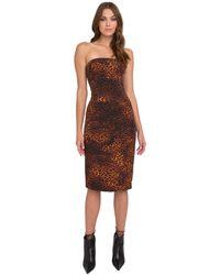 Black Halo Jackie Leopard Print Strapless Dress - Brown