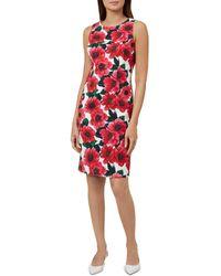 Hobbs - Moira Floral Print Sheath Dress - Lyst