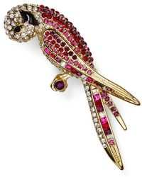 Carolee - Parrot Pin - Lyst