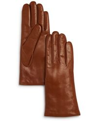Bloomingdale's Cashmere - Lined Leather Gloves - Brown