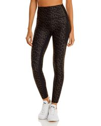 WEAR IT TO HEART Cheetah Nala Leggings (63% Off) - Comparable Value $108 - Black
