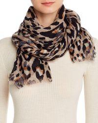 Bloomingdale's Leopard Print Wool Scarf - Multicolour