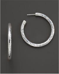 Ippolita | Sterling Silver Skinny Electroform Hoop Earrings | Lyst