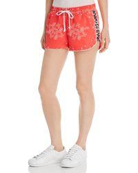 Pam & Gela Windbreaker Bandana Print Shorts - Red