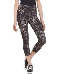 adidas Mountain Flash Pants in Black Lyst