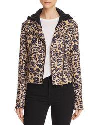 Aqua Leopard Faux Suede Moto Jacket - Multicolor