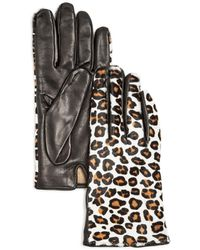 Bloomingdale's Cashmere Lined Calf Hair Gloves - Black