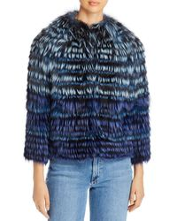 Maximilian Short Tipped Fox Fur Jacket - Blue