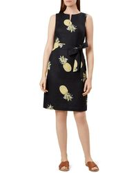Hobbs Amalfi Tie - Waist Pineapple Print Dress - Blue