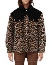 Maje Bamion Cat Print Fleece Jacket - Black