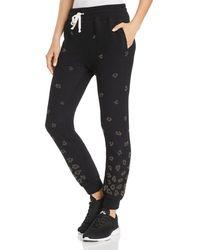 Beach Riot Embellished Leopard Sweatpants - Black