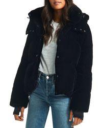 Sam. Sydney Velvet Short Down Coat - Black
