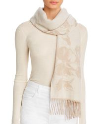 C By Bloomingdale's Floral Cashmere Scarf - Natural