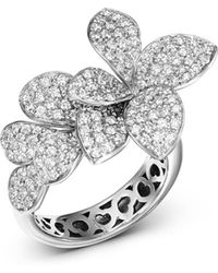Pasquale Bruni - 18k White Gold Stelle In Fiore Diamond Ring - Lyst