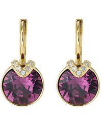 Swarovski Bella Crystal Drop Earrings - Purple