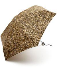 Bloomingdale's - Mini Cheetah Print Umbrella - Lyst