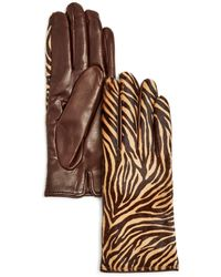 Bloomingdale's Cashmere Lined Calf Hair Gloves - Brown