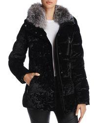 Andrew Marc Vara Fox Fur Trim Velvet Down Coat - Black