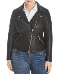 Marina Rinaldi X Ashley Graham Ebanista Leather Moto Jacket - Black
