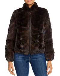 Maximilian Sable Jacket - Brown