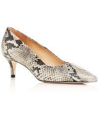 Joan Oloff Women's Callie Kitten - Heel Court Shoes - Multicolour
